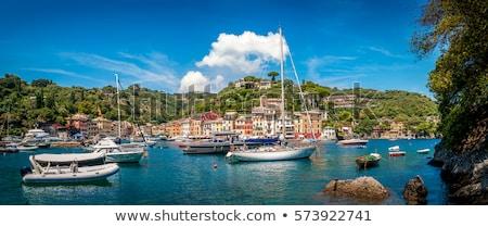 Genoa port in Italy Stock photo © boggy