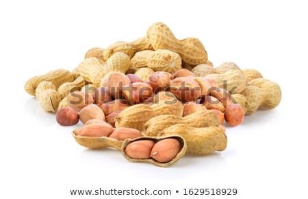 ground nuts  Stock photo © FOKA
