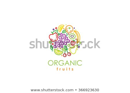 Verde pereira fruto logotipo vetor comida Foto stock © blaskorizov