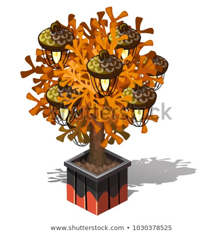 Decorative lamp in the form of a potted tree with plafonds in the form of acorns isolated on white b Stock photo © Lady-Luck