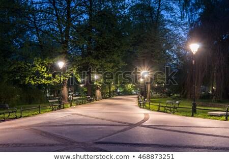 ночь парка изображение воды природы саду Сток-фото © RazvanPhotography