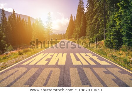 Work Or Retire Decision Arrows Concept Stock photo © ivelin