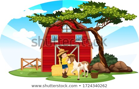 Farm scene with girl and pony on the farm Stock photo © bluering