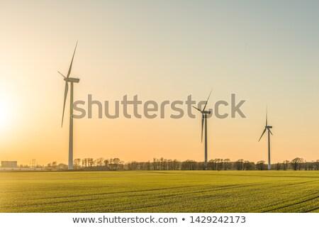 風 ジェネレータ 空 緑 再生可能エネルギー 日没 ストックフォト © dmitry_rukhlenko