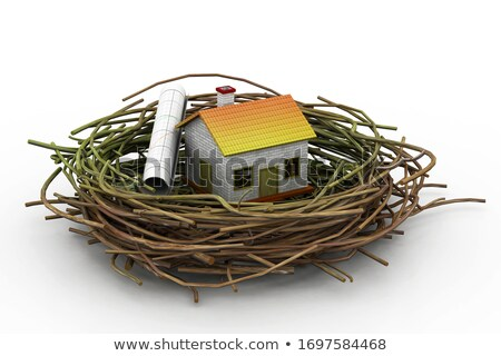 Business chart an house on nest	 Stock photo © 4designersart