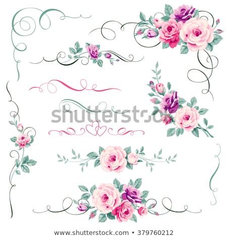 Stock fotó: Dekoratív · sarok · alkotóelem · rózsaszín · virágok · zöld · levelek