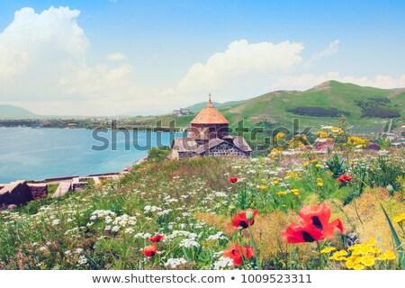здании Армения город дома окна Сток-фото © ruzanna
