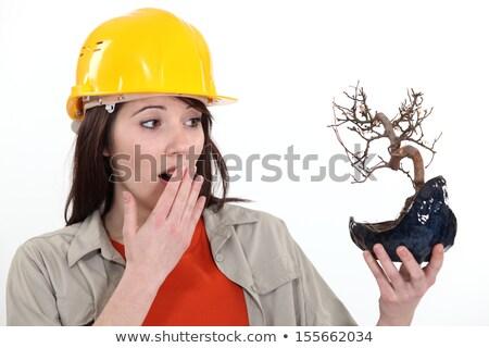 Ecologist upset by burnt tree Stock photo © photography33