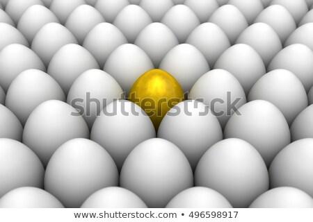 gem eggs among chicken eggs Stock photo © vaeenma