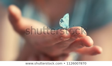 Vlinder hand foto natuur mensheid ecologie Stockfoto © timbrk