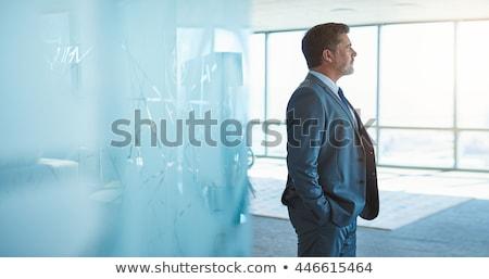 Középkorú felnőtt üzletember mutat remek férfiak öltöny Stock fotó © luminastock