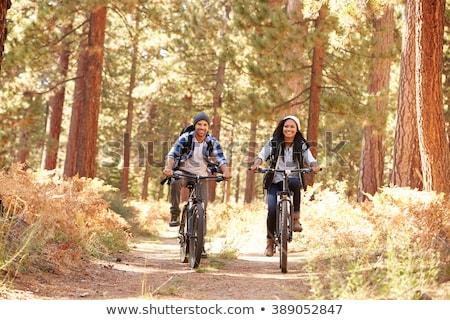 Lovaglás bicikli erdő gyors sport természet Stock fotó © tilo