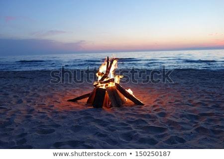 Fire on the beach Stock photo © Undy