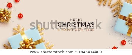 Snowflakes Christmas Silver Blue Web Banner Stock photo © fenton