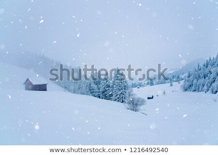 beautiful landscape in winter with snow and housing area Stock photo © meinzahn