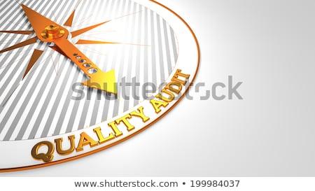 Qualidade auditar branco dourado bússola agulha Foto stock © tashatuvango