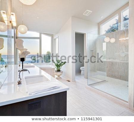 view of elegant modern bathroom stock photo © vwalakte