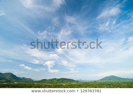 Idilli legelő szép időjárás tájkép friss Stock fotó © Smileus