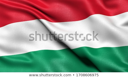 Hungarian flag Stock photo © Nneirda