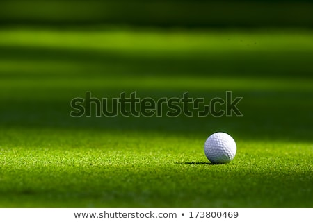 Golflabda zöld fű golfpálya sport nyár mező Stock fotó © tetkoren