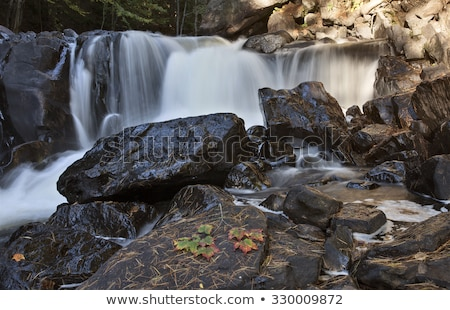 Park ontario waterval vallen najaar kleuren Stockfoto © pictureguy