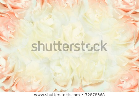 Stock photo: Luxurious Bouquet with White and Cream Roses