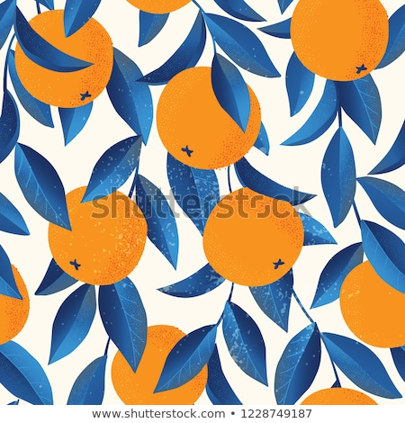 Orange fruits bleu textiles différent Photo stock © dariazu