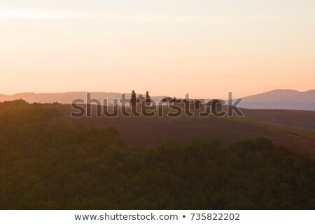 Tuscany landscape at sunrise. Chapel of Madonna di Vitaleta, San Quirico d'Orcia, Italy Stock photo © photocreo