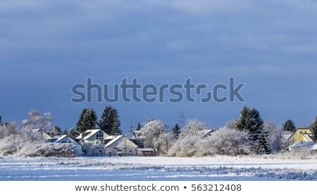 Tél tájkép München fehér fa hó Stock fotó © meinzahn