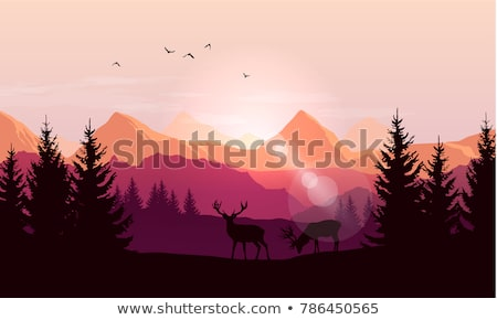 silhouettes of the mountains at sunset stock photo © all32