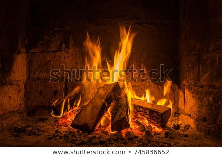 log fire burning Stock photo © romvo