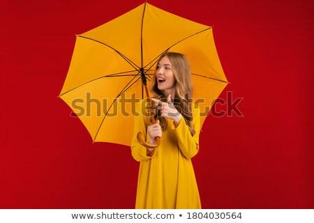 Portré elragadtatott fiatal nő vörös ruha pózol áll Stock fotó © deandrobot