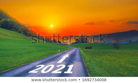 green 2020 come stock photo © oakozhan