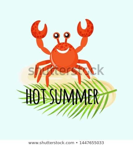 Hot Summer Postcard, Crab and Leaf of Fern Vector Stock photo © robuart