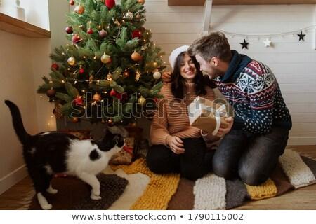 presentes · retrato · feliz · irmãos · natal · casa - foto stock © photography33