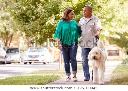 Stock fotó: Idős · pár · sétál · kutya · fa · mező · űr