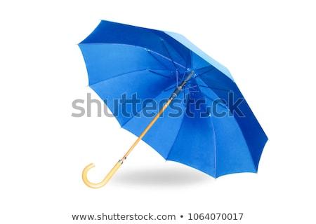kinyitott · kék · esernyő · izolált · fehér · tavasz - stock fotó © ozaiachin
