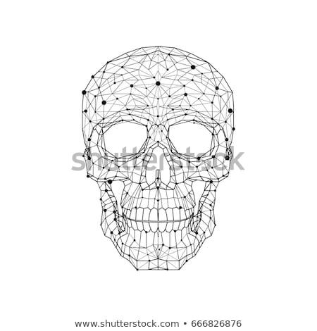 Preto digital esqueleto corpo em pé coração Foto stock © wavebreak_media