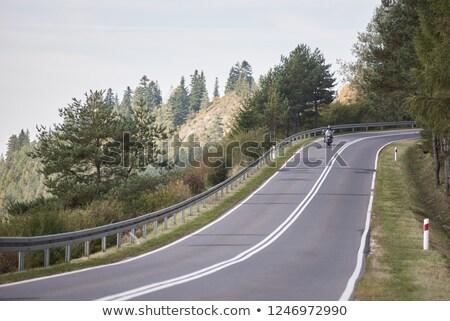 午前 ライディング 美しい トラック 作業 レース ストックフォト © Sportlibrary