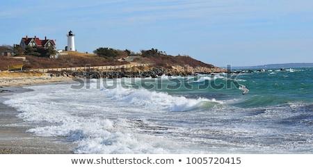 Кейп-Код красивой лет пляж древесины Сток-фото © Hofmeester