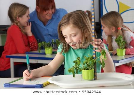 Ragazza apprendimento impianti scuola classe bambini Foto d'archivio © monkey_business
