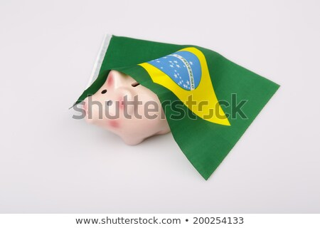 pig money box and Brasil flag Stock photo © jarin13