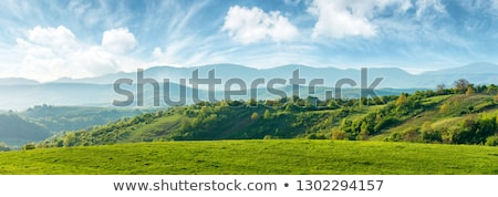 green hill summer landscape and blue sky panorama stock photo © frameangel