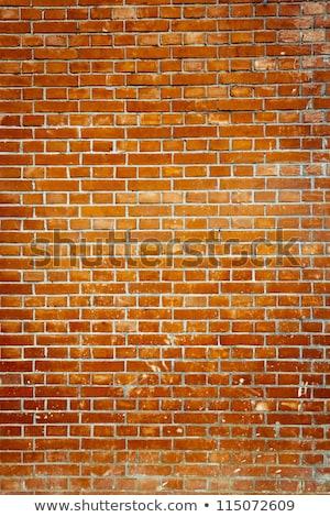 Stok fotoğraf: Canlı · kahverengi · tuğla · duvar · modern · görüntü · Bina