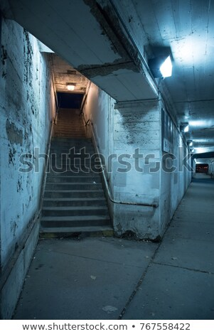 Alley with stairs at night Stock photo © gemenacom