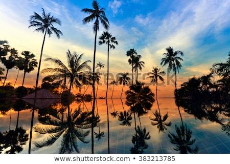 isla · sol · playa · famoso · Tailandia · agua - foto stock © petrmalyshev