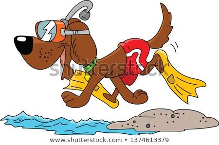 kutya · kék · védőszemüveg · tengerpart · víz · háttér - stock fotó © quasarphoto