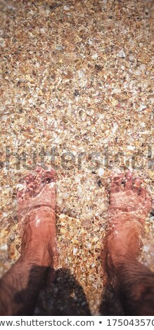 Masculina piernas naturaleza mar verano Foto stock © inxti