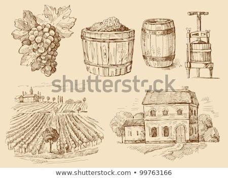 Original hand drawn farm collection Stock photo © netkov1