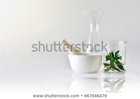 Laboratory glassware with mortar and pestle. Stock photo © RAStudio